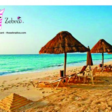 Pink Zebra Trip Incentive – Can You Hear the Waves?